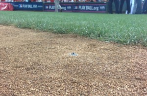 One of three Inertia Unlimited cameras deployed for Fox Sports, this one at first base.